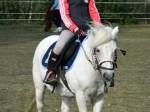 Jezdecká školka Popelka