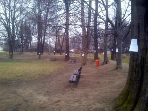 Falešné letáky na stromech u Malše
