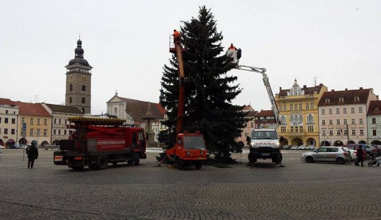 Vánoční strom dosloužil. Majitel dostane jen kmen
