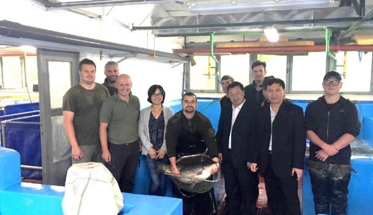 Jihočeští a čínští rybáři navázali vzájemnou spolupráci