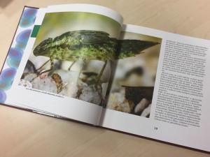 Jihočeská univerzita vydala knihu o dobrodružství přírodovědy
