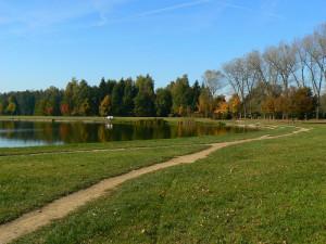 Rybník Bagr
