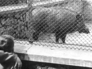 Hlubocká zoo slaví výročí. Její zakladatel přicestuje z minulosti