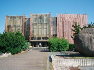 Balvan před knihovnou