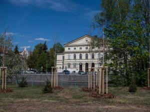 Údržba zeleně stála letos město přes 30 milionů korun.