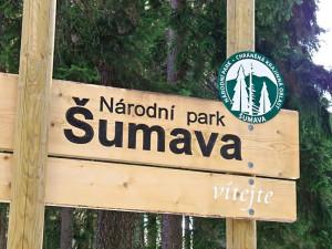 Jihočeský kraj podal žalobu na Správu národního parku Šumava  a Ministerstvo životního prostředí