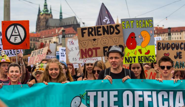 FOTO, VIDEO: Kočka, pes i kráva, mají svoje práva! Volali lidé v rámci pochodu za práva zvířat