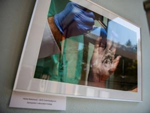 Průstřel žebra i oběšenec za ranního úsvitu, policie vystavuje fotky z místa činu