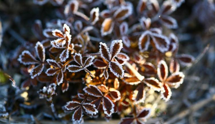 V týdnu se ochladí, čekají se mrazíky, na horách i sněhové vločky