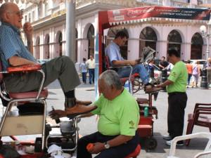 Veracruz - čističi bot