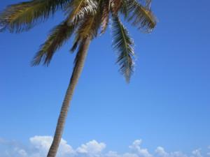 Oblast Quintana Roo - Tulumská pláž