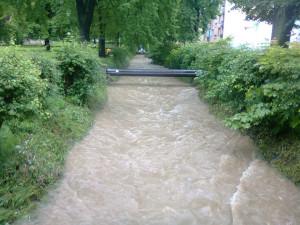 Potok v Suchém Vrbném. Foto Káťa Václavová