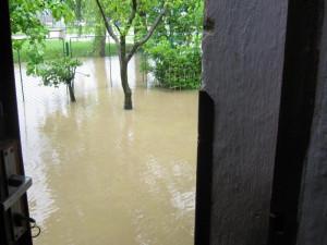 Potok v Olešníku. Foto Markéta Popelová