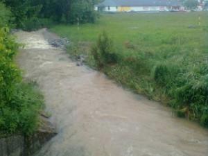 Potok v Nových Hrdějovicích. Foto Markéta Žáčková Ouborná