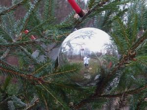 Světla Zemanová ve vánoční kouli (vánoční stromek u rybníka Jarval). Soutěží Světla Zemanová