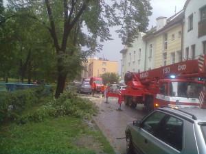 Pád větve stromu na zaparkovaná auta v ulici Československých legií. Foto Ivana Prouzová