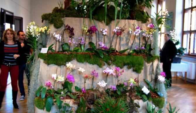 Instalace květin jsou opravdu nádherné