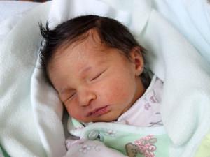 Sofia Serna Alvarez