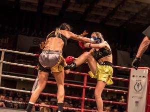 Pardál Gladiators Night 2017