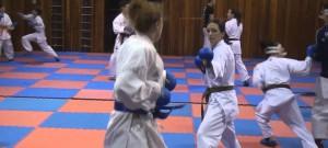 Trénink budějckých karatistů na mládežnické mistrovství Evropy v karate